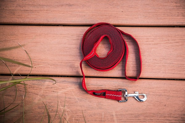 Suchleine, Hundeleine 5 bis 50 m lang 25 mm breit